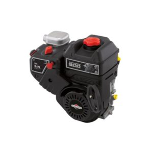 Briggs & Stratton 900 Snow Series™